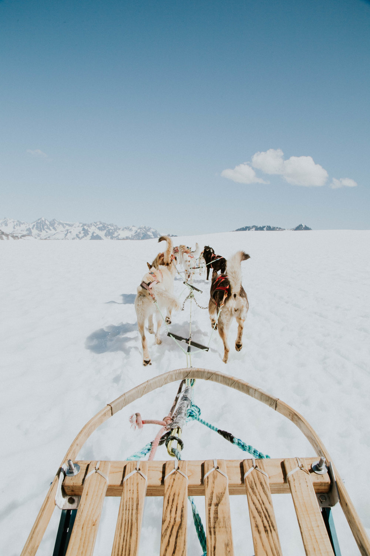 AlaskaSewardBlog8.jpg
