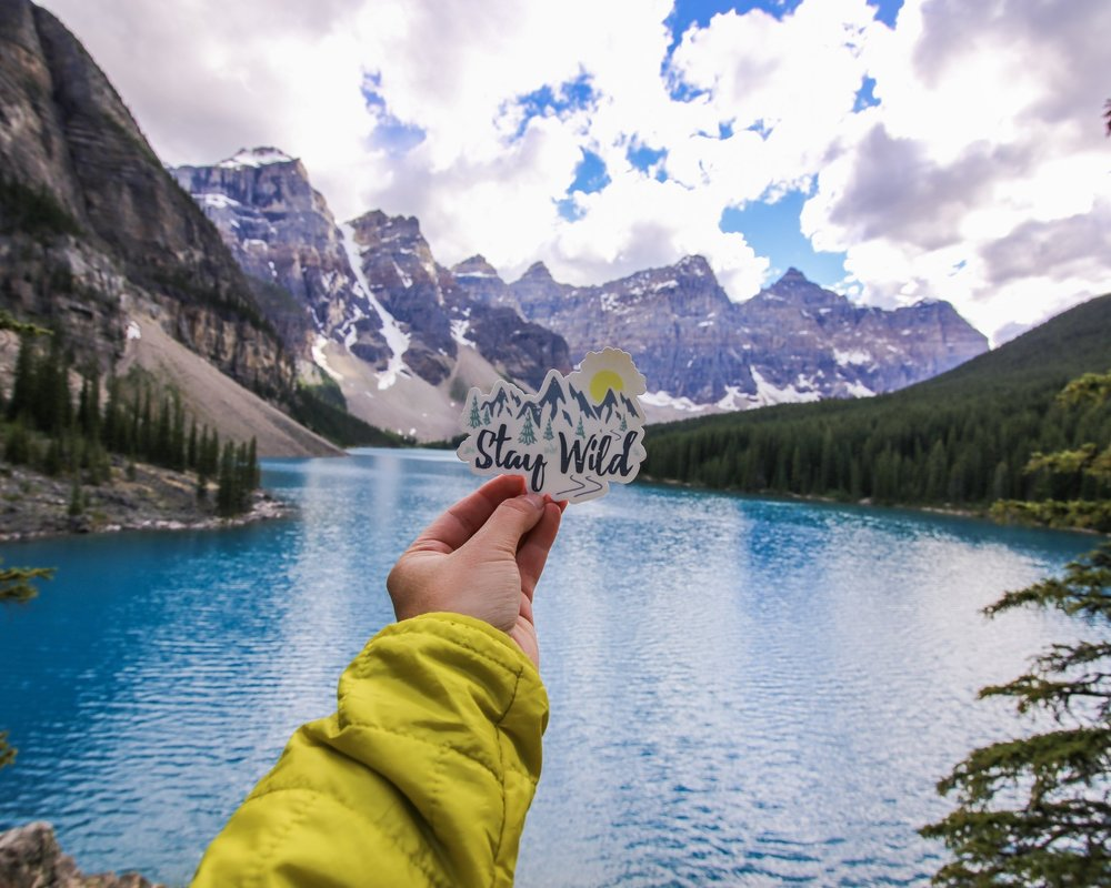 Stay Wild Sticker - Banff, AB.JPG
