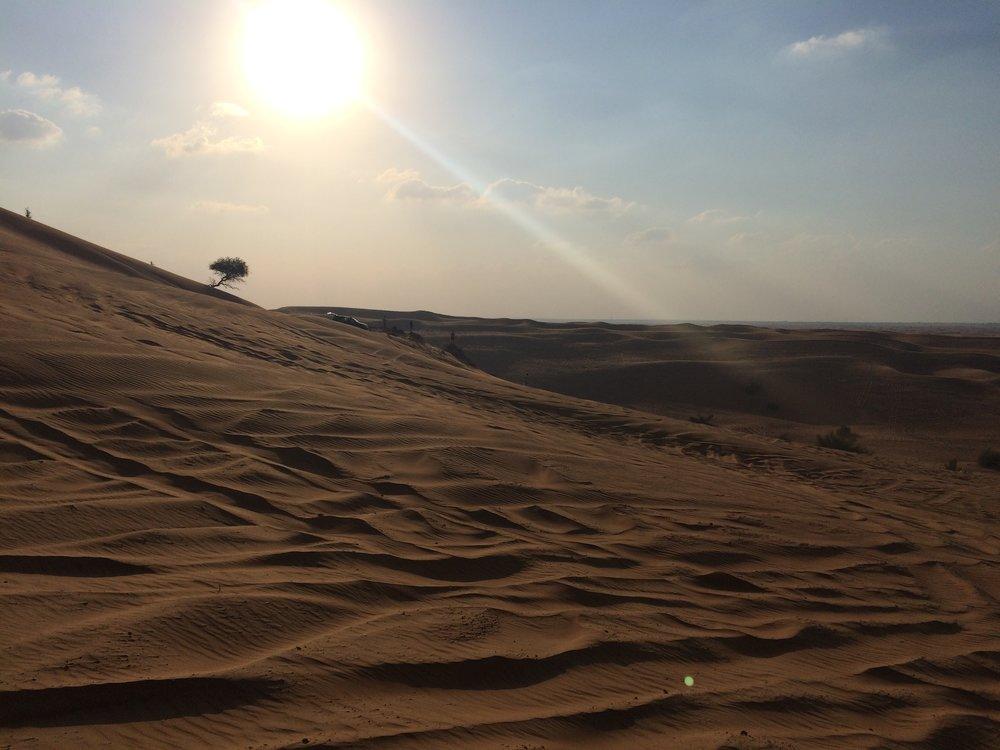 Dubai Sand Dunes B  - 3.JPG