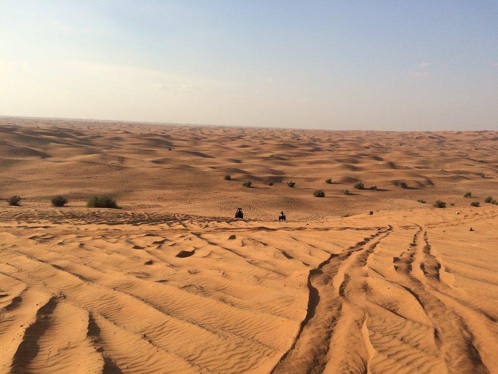 Dubai Sand Dunes B  - 5.JPG