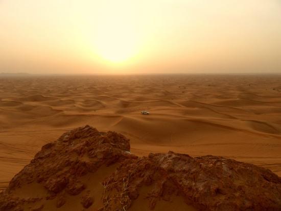 dubai-desert-conservation (1).jpg