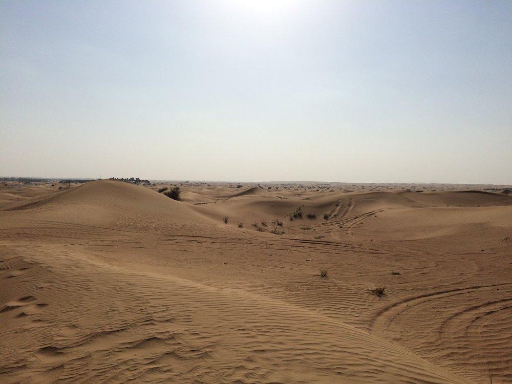 Dubai Dunes - 3.JPG