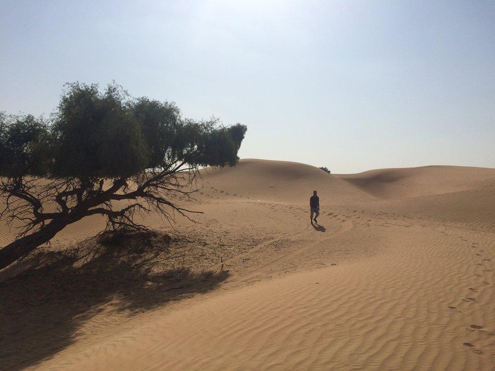 Dubai Dunes - 1.JPG