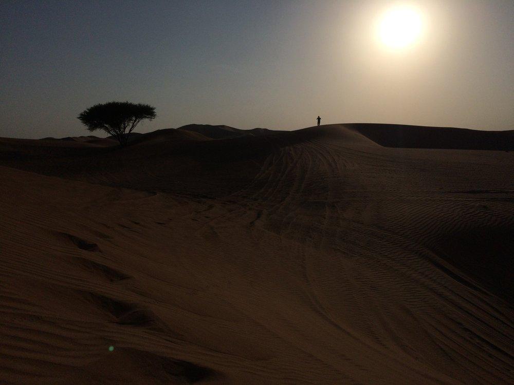 Dubai Dunes - 6.JPG