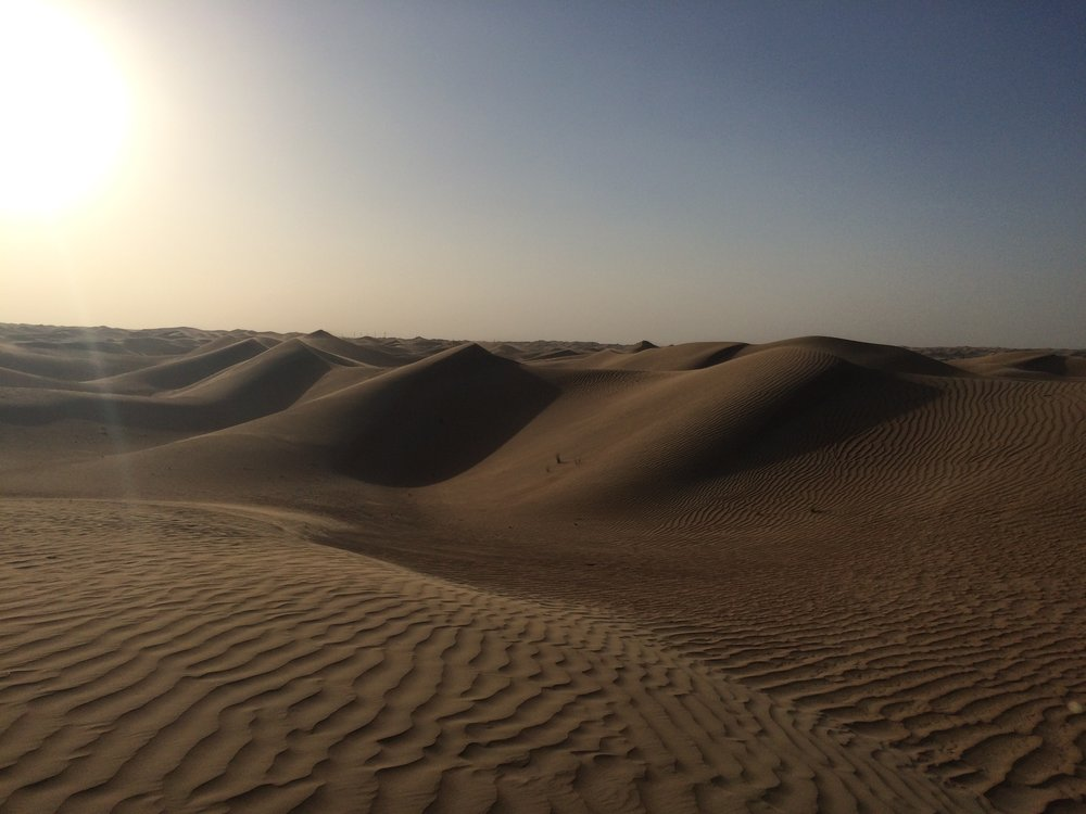 Dubai Dunes - 18.JPG