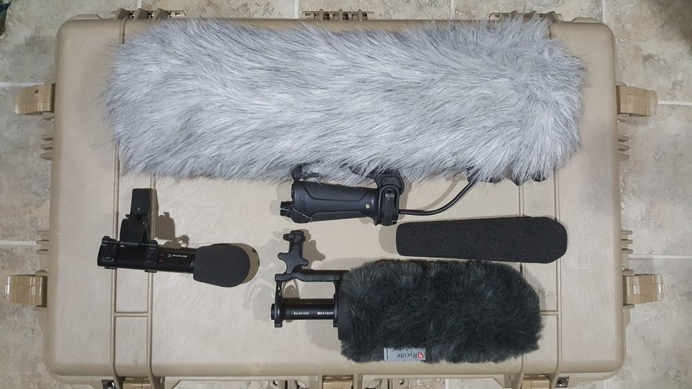 Shotgun and Super Cardioid Wired Microphones - SENNHEISER - Makers of dependable shotgun and super-cardioid microphones that stand up to extreme weather conditions and sound great for capturing the subtleties of the human voice.