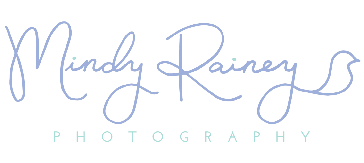 Santa Barbara Photographer | Mindy Rainey Photography