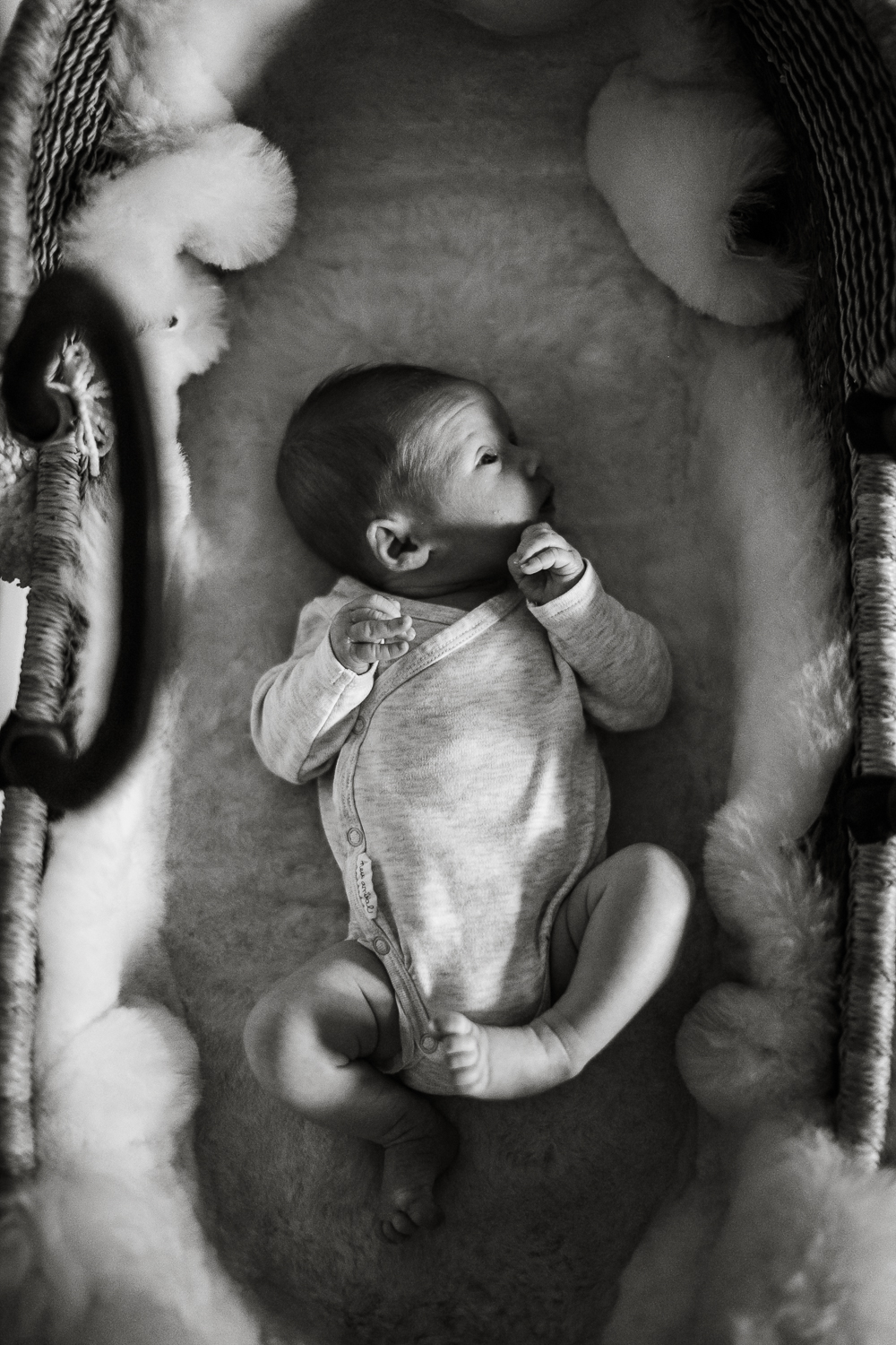 Santa_Barbara_Newborn_Photographer19.jpg