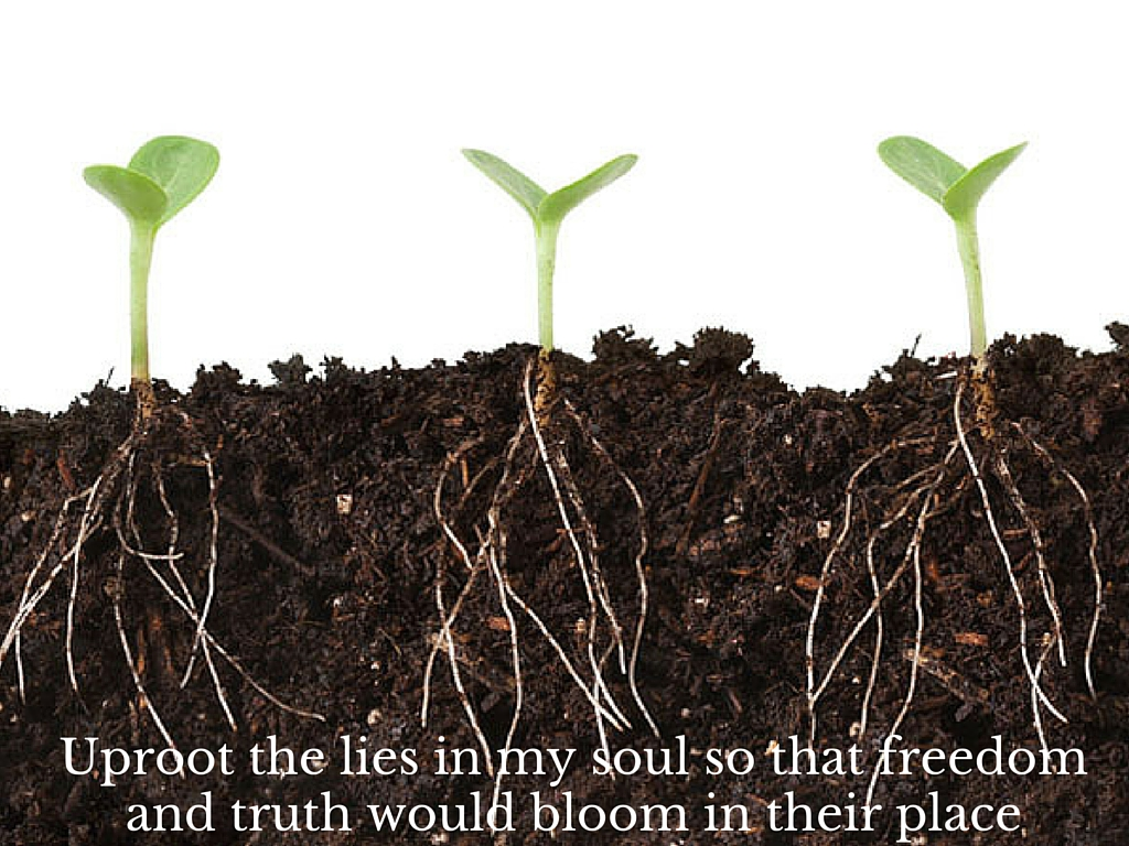 uproot the lies that have taken root in my soul and that freedom and truth would bloom in their place