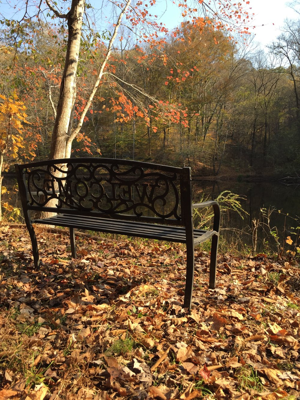 bench.penuelridge