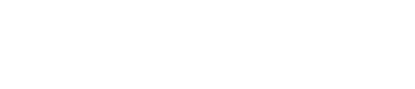 Launch Raven Digital Marketing