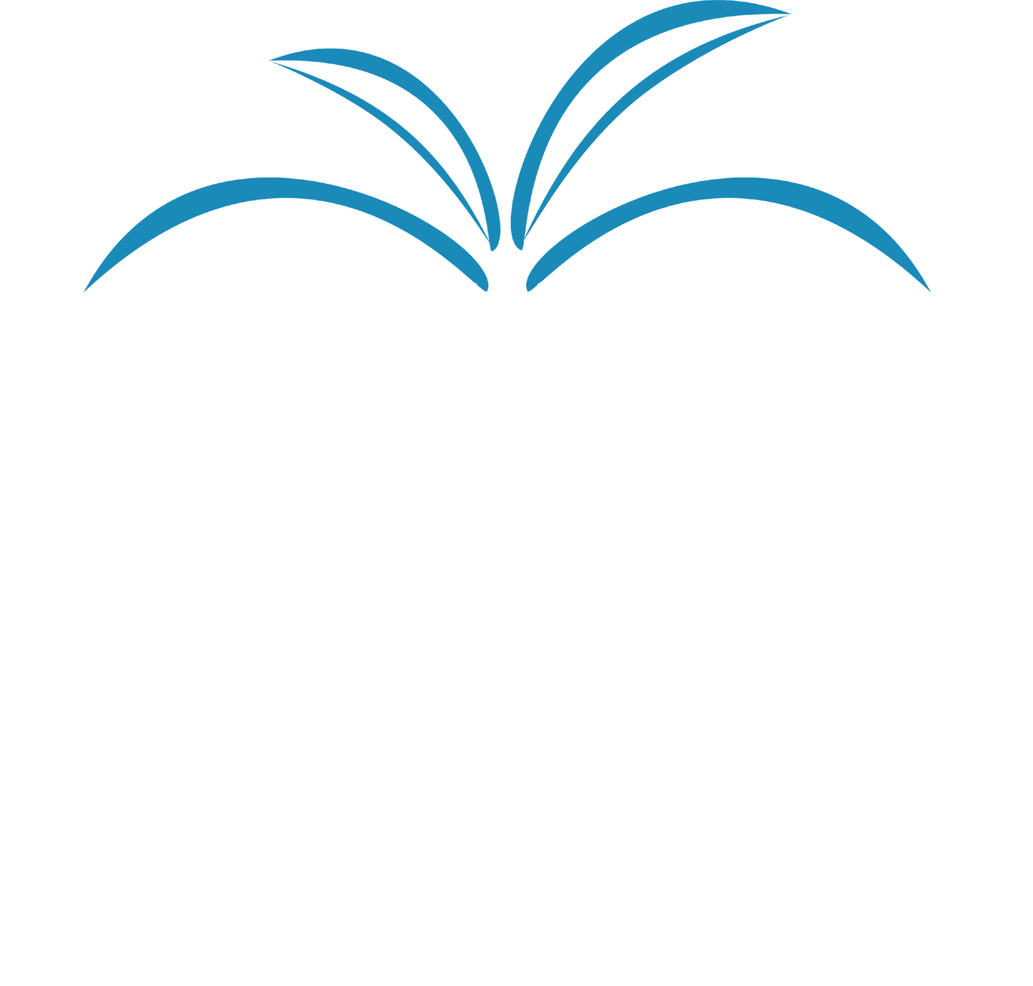 True Terrain Landscaping