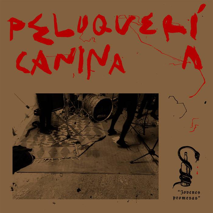 RNLD-37: PELUQUERIA CANINA - JOVENES PROMESAS LP