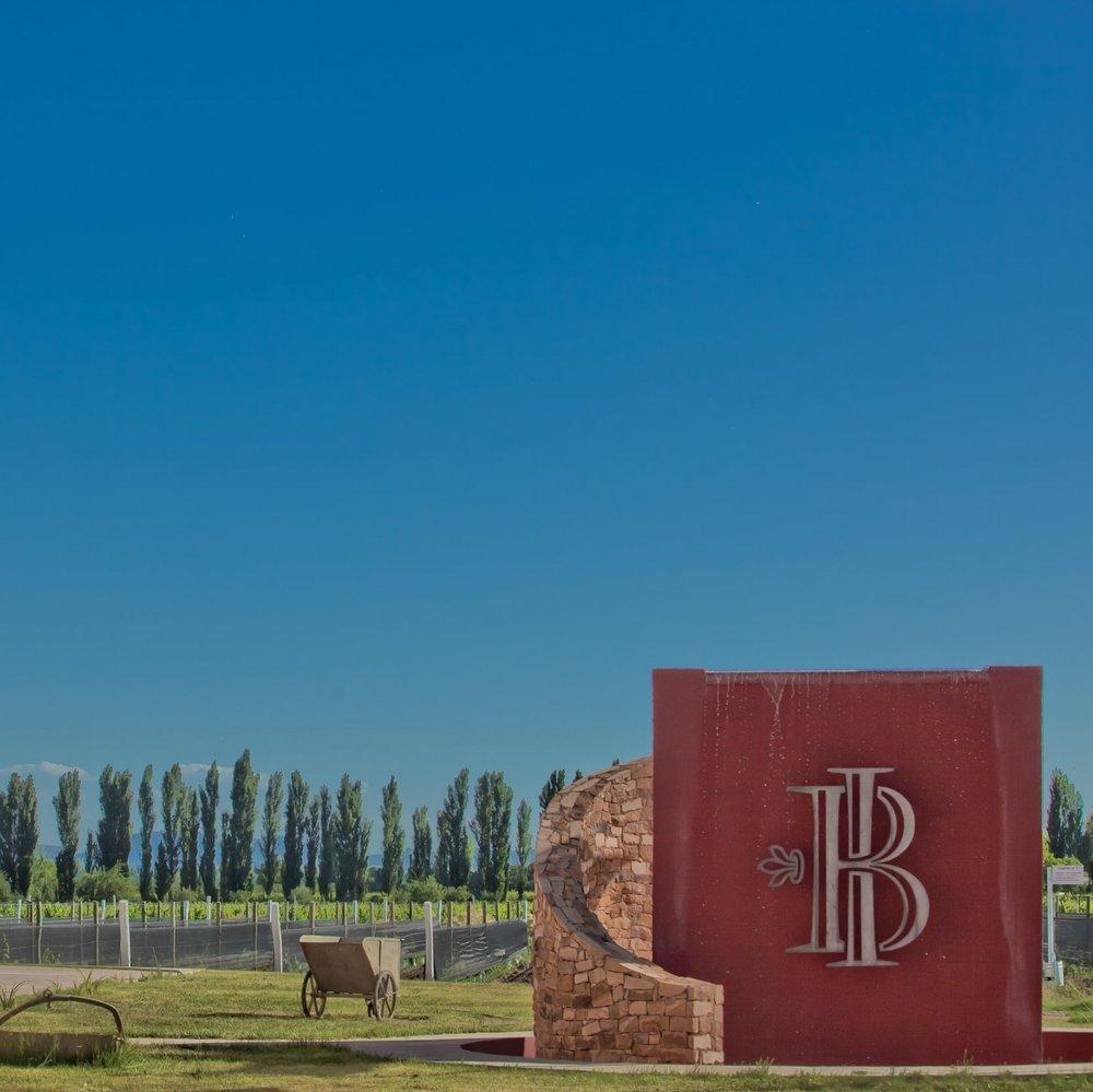 Bodega Iaccarini -