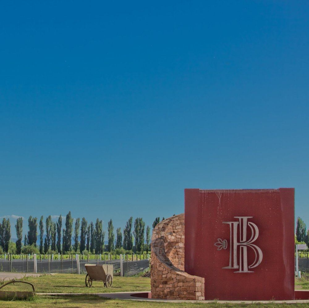 Bodega Iaccarini - DOC: San Rafael, Mendoza | 2,788 feet ASL