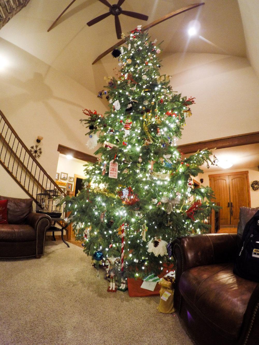 christmas-dani-18.jpg