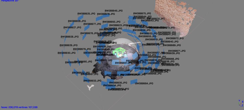photoScan photogrammetry