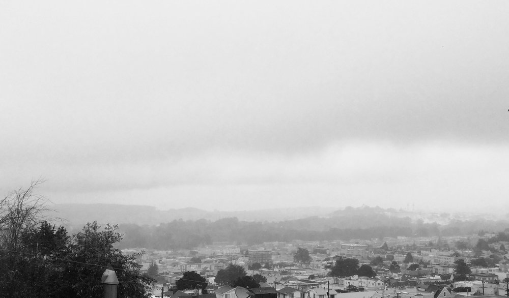 vue depuis les hauteurs de San Francisco en direction du Golden Gate Park