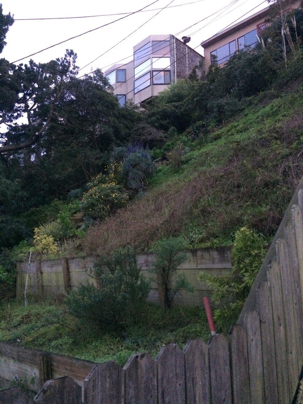 Des jardins en lutte permanente contre l'érosion