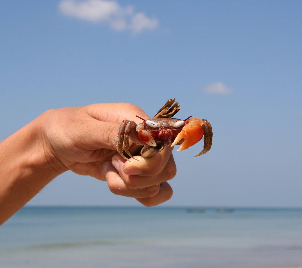 ngwe-saung-beach-myanmar-car-rental-11.jpg