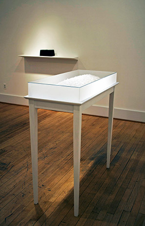 """<i>january, snow flower tomb</i>, paper, sewing pin, h. 41"""" x w. 38 1/2"""" x d. 18 1/21/2"""" (w/ table, acrylic box), 2007"""