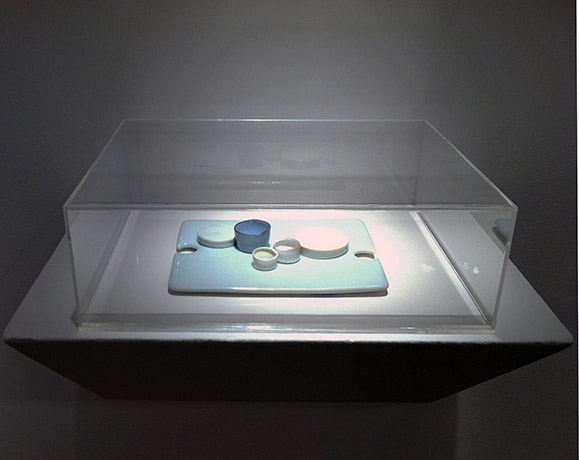 <i>of a moon garden, january III, gallery view</i>, 2013