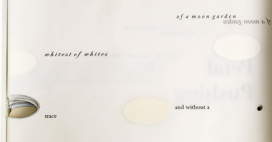 detail of  <i>Book III</i>