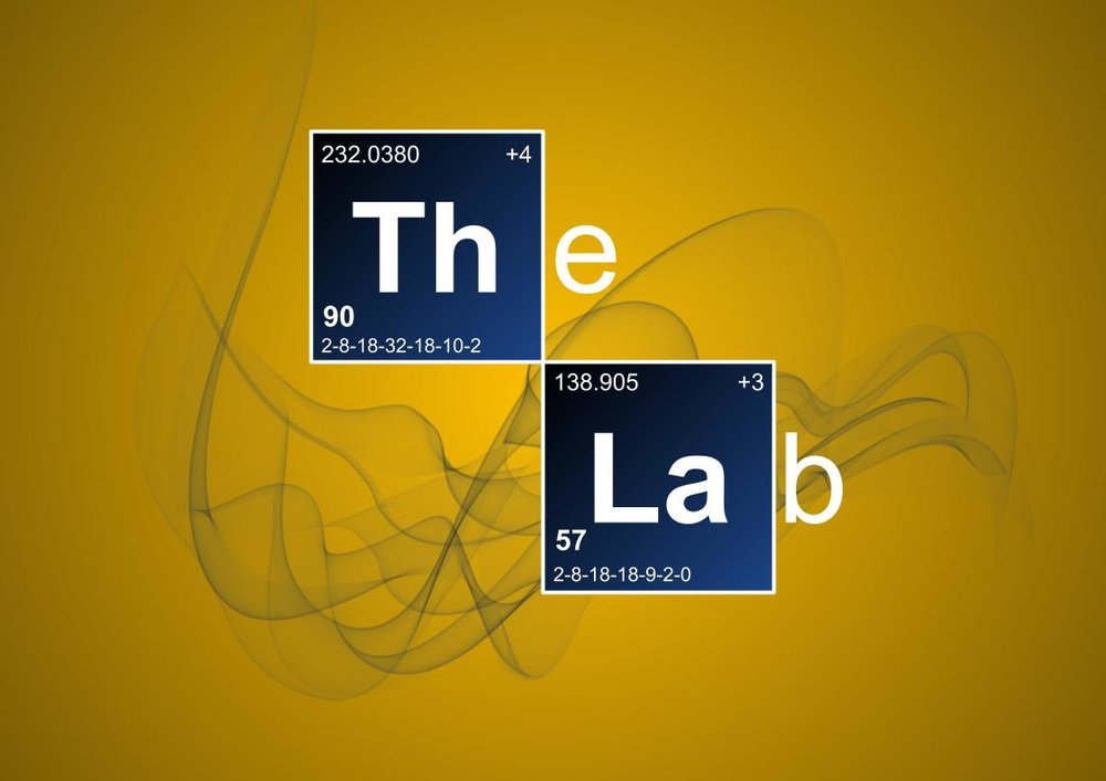 The Lab - Yellow and Blue v2.jpg