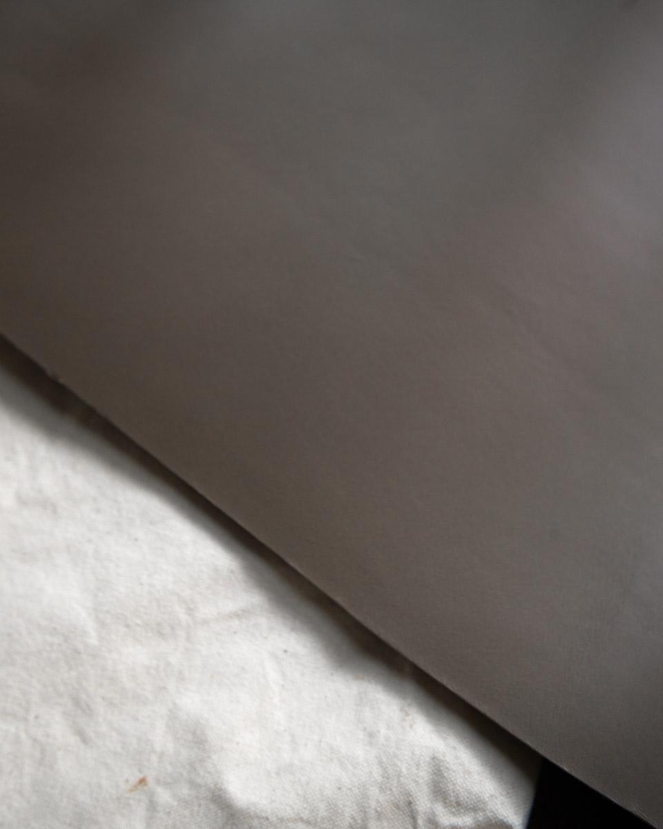 dauphin grey