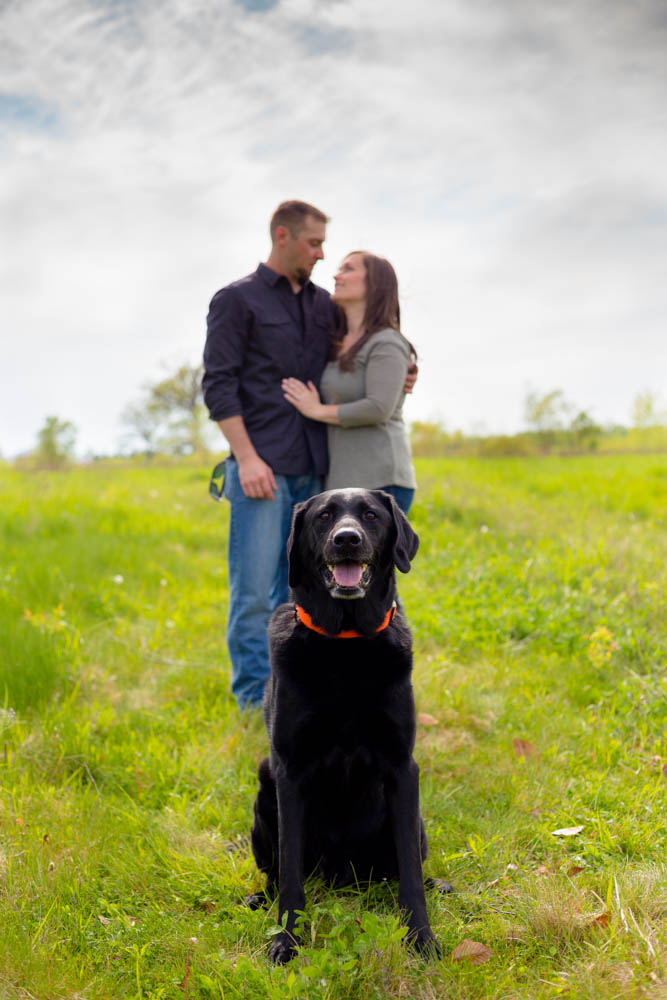 Dog Engagement Session Columbus, Ohio, Dublin, Ohio, Wedding Photographers