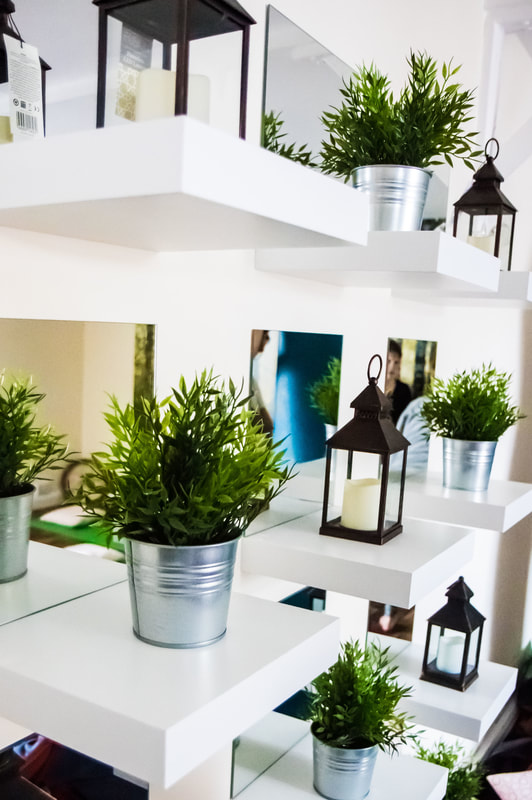 Ki plants.jpg