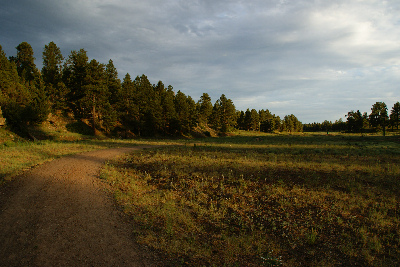 Foxglenn Trails*