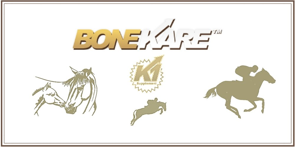 BoneKare Buckets  are safe for all horses! Sport horses, race horses, broodmares, dressage horses, show jumpers, yearlings, retired horses, and more!