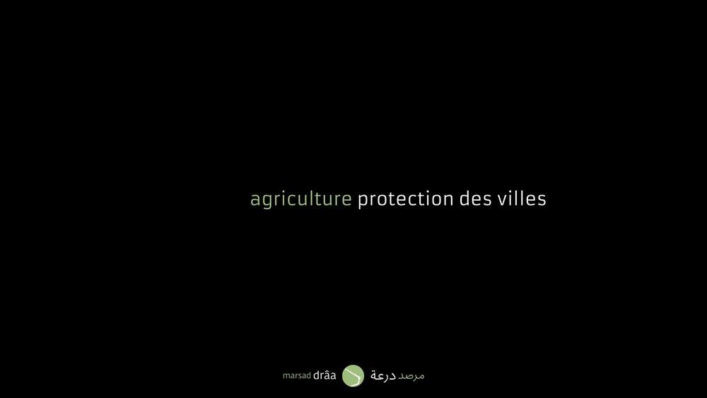 On a vu des projets où l'architecture était au service de l'agriculture, mais parfois, l'agriculture sera l'instrument dont l'architecture et l'urbanisme ont besoin pour se protéger de la désertification.