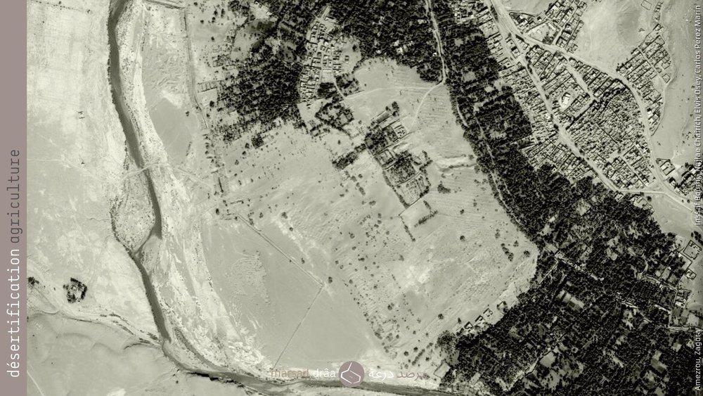 16. Projet qui se situe dans la palmerai de Fezouata, près d'Amezrou (Zagora), où la palmeraie est sur le point d'être coupée en deux à cause du sable.
