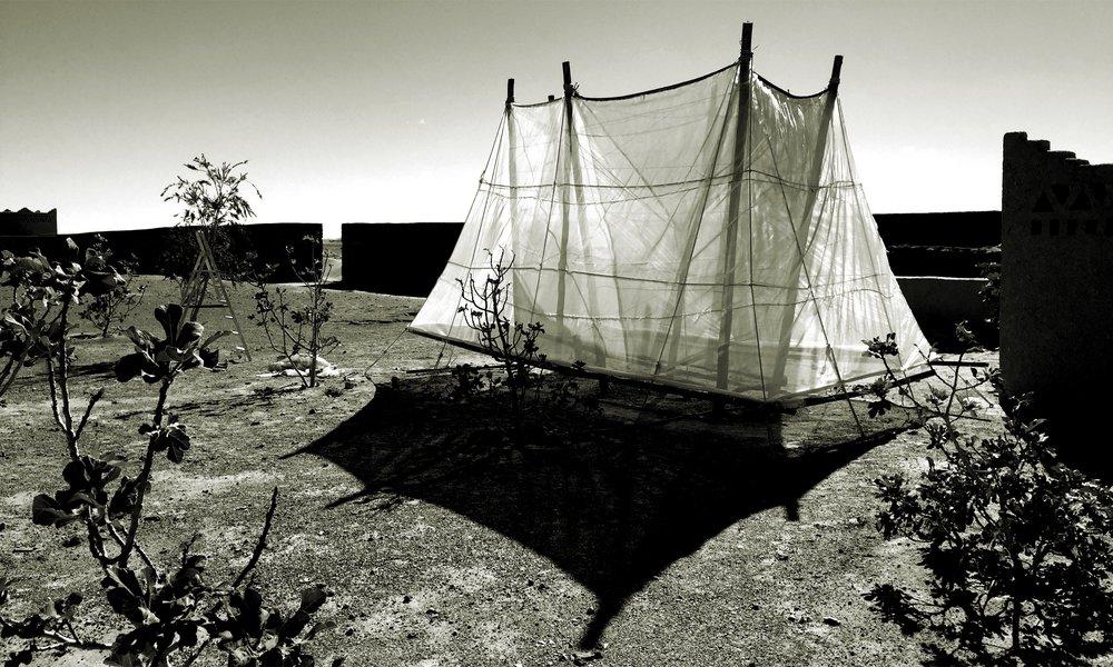 🅦 Condensation water catcher, Tissardmine (Morocco) 2016