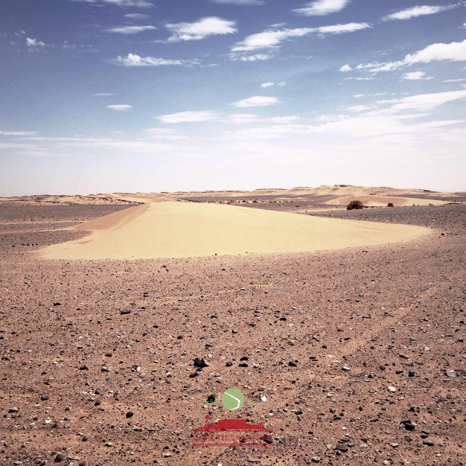 A little dune (barkhan type) that has moved 80 in just 3 days. It is 500 m far from the first building of the village.