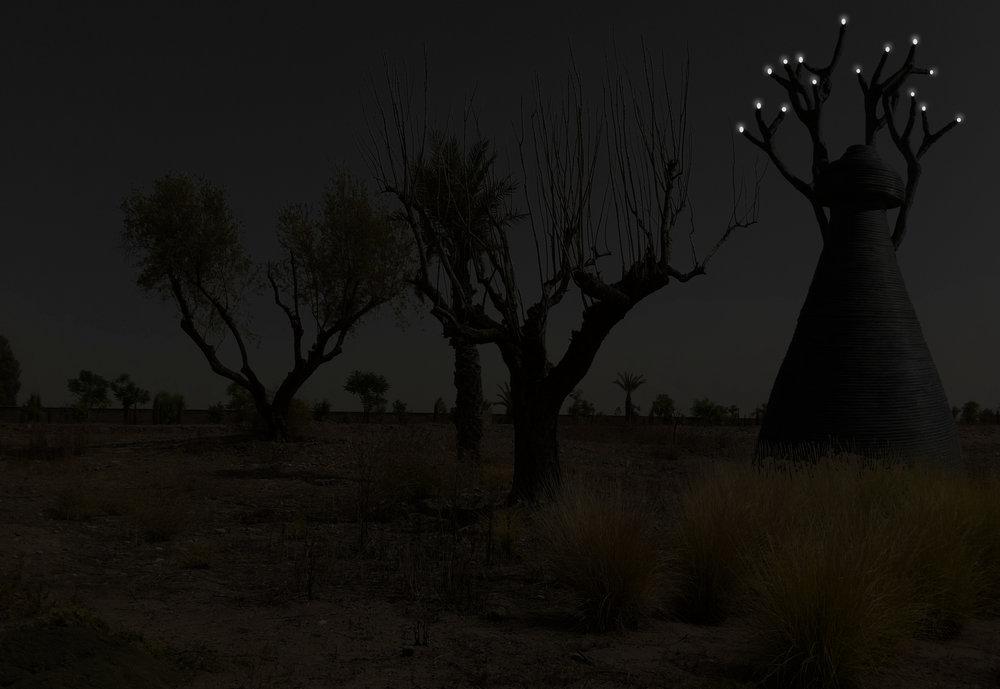 ROBE nuit 12.03.11.jpg