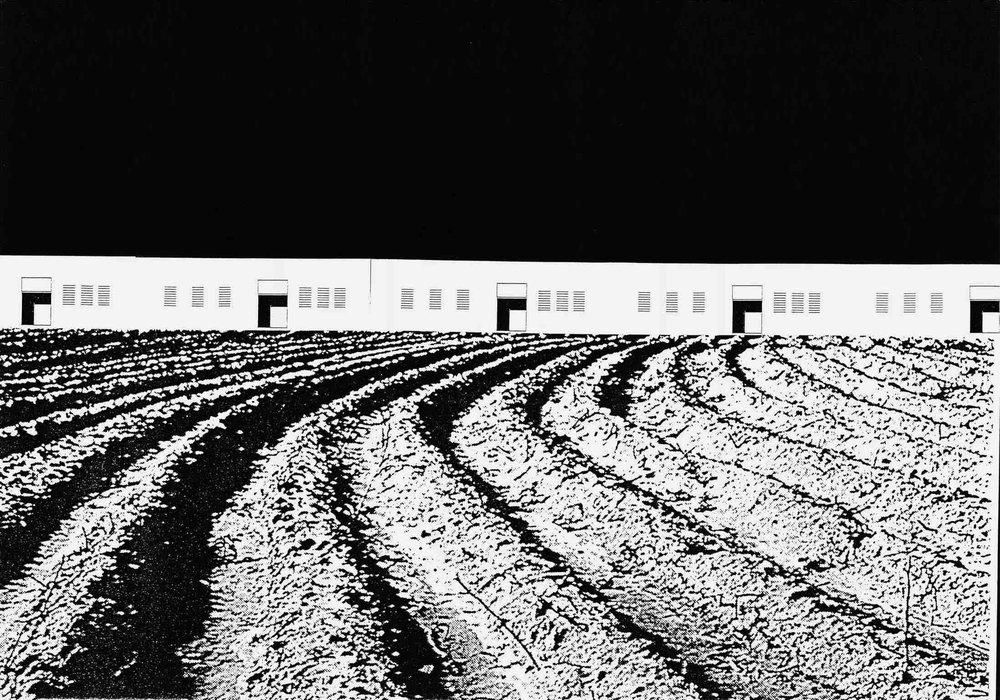 🅒 25 social dwellings, Doña Blanca, Cádiz (Spain) 1998