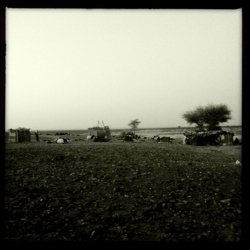near Erg Chegaga, Zagora (2012)