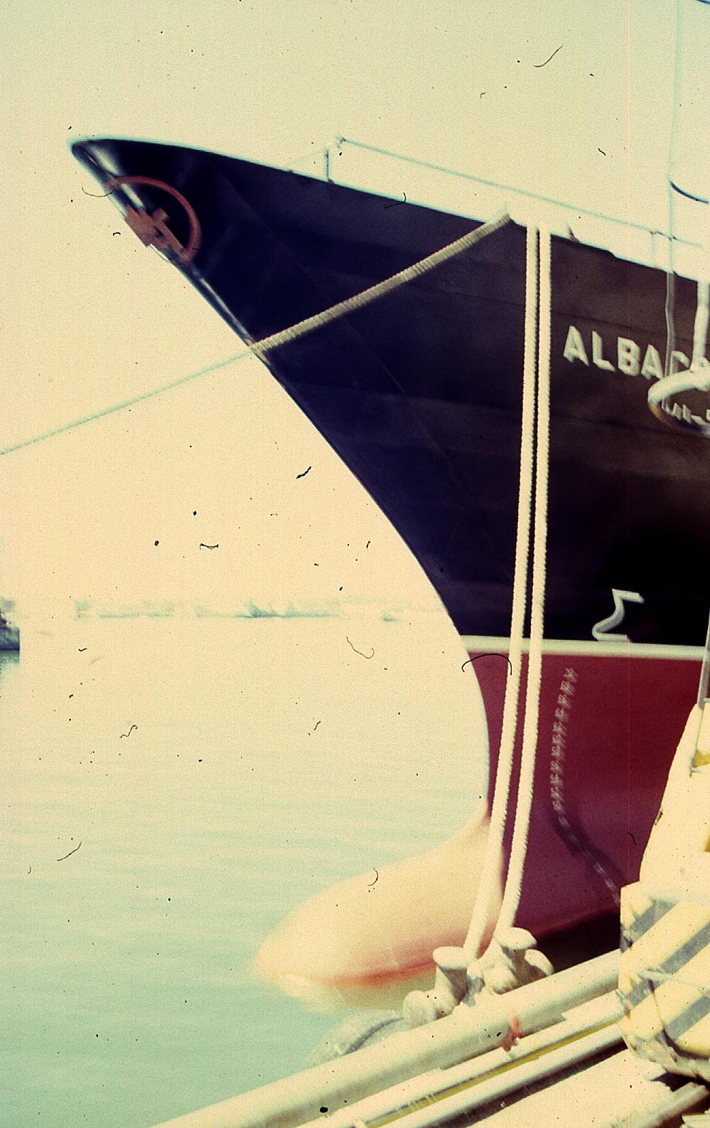 ALBACORA IV022.jpg