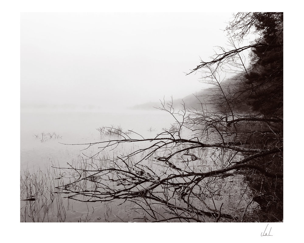 Bass-Lake_Studdy-1_RGB_Matted.jpg