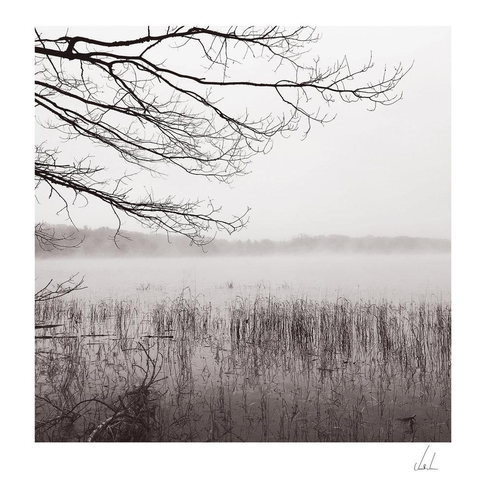 Bass-Lake_Studdy-2_RGB_Matted.jpg