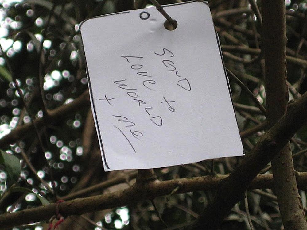 """Os pedidos dos visitantes passam a integrar a obra """"Árvore dos Pedidos para o mundo"""""""