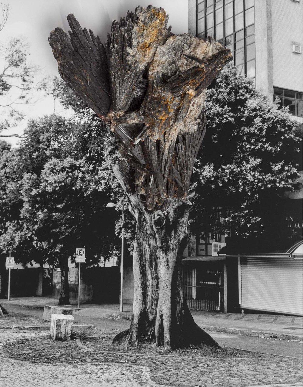 Laura Belém, série Reconstrução, fotografia, 2017
