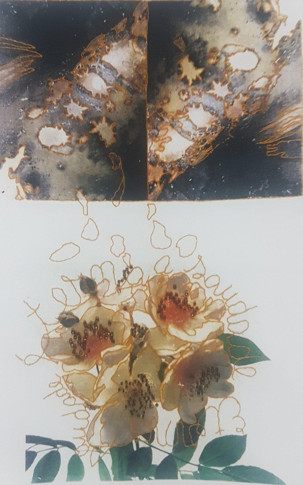 Gilda Goulart, série Severina, transfer da foto feito sob saco de farinha, bordado em ponto de alinhavo, 93 x 65 cm