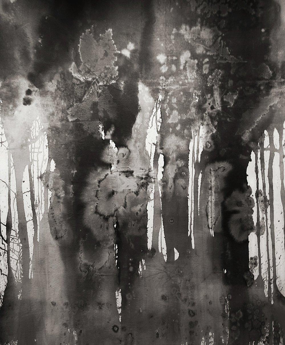Paula Klien, Invisibilities, 2016