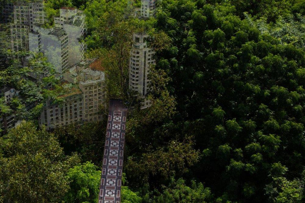 Floresta ou viaduto, 2016