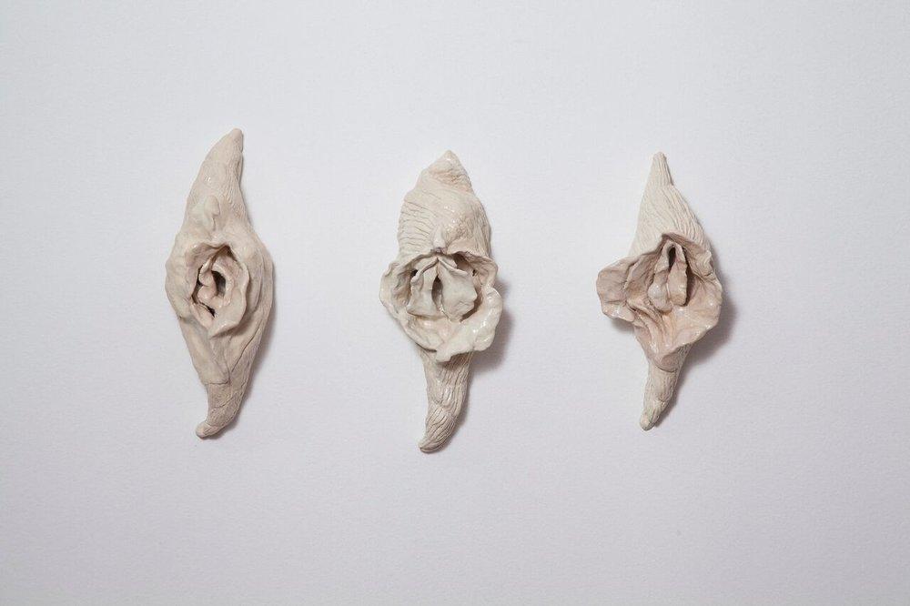 As conchas vagina, 2017