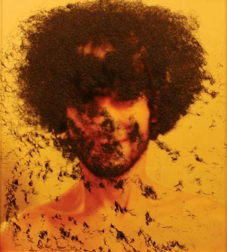 Enxame de consciência, 2004. Cabelo, fotografia e cabelo, 73 X 196 cm